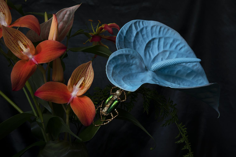 Bijoux et végétal : une collaboration avec l'atelier Noboru