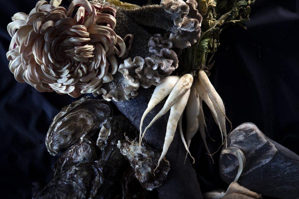 photographie de ©virginie pérocheau pour @experiencevegetale. Nature Morte, composition florale mélant des huitres et des fleurs. Vue du dessus sur fond noir. Décor végétal libre et onirique. Les Huitres sont disposées sur le fond noir, entourées de chrysanthème rose pale, d'un bouquet de navet blanc et de pierre grise. Lumière en clair obscur l'ensemble de l'image.