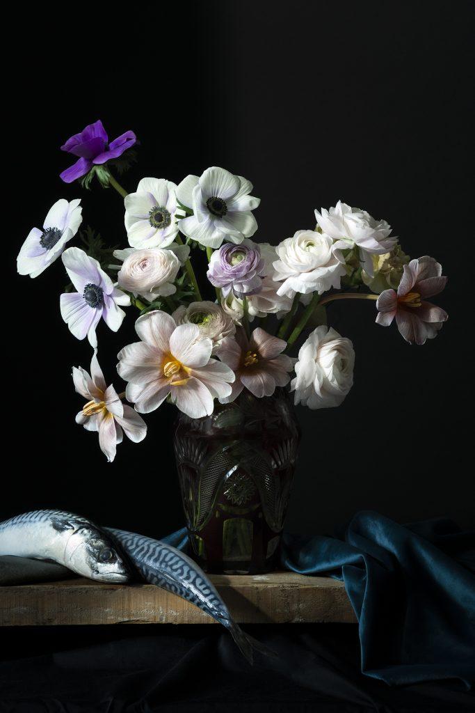 photographie de ©virginie pérocheau pour @experiencevegetale. Nature Morte picturale. Bouquet fleurs blanches sur fond noir. Vase transparent. Maquereaux et tissu bleu en drapé. Inspiration tableau de la peinture hollandaise. Ecole Dutch