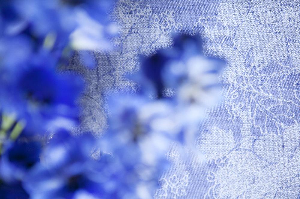 photo de nappe de verilin par virginie perocheau. des fleurs bleues au-dessus d une nappe bleue