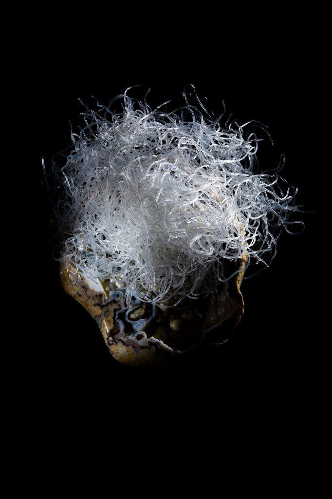 photographie de virginie pérocheau vue du dessus sur fond noir des vermicelles de riz japonais recouvre une pierre comme un visage