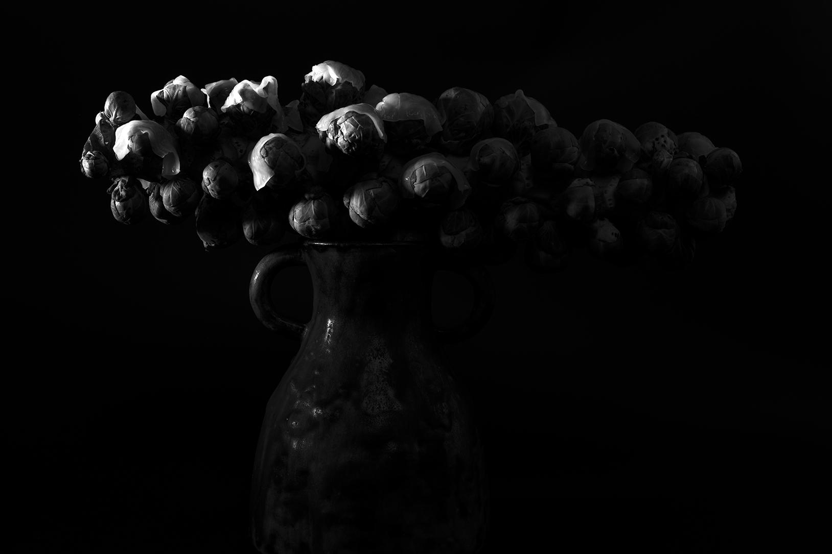 Photo en noir et blanc de virginie pérocheau. Branche de choux de bruxelle posée sur une cruche et recouverte par endroit de pâtes de riz japonaisex