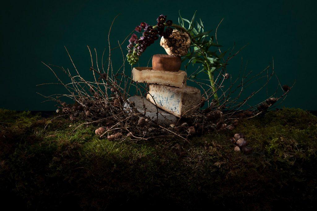 pile de fromage surrealiste dans un decor de sous-bois mousse et branches
