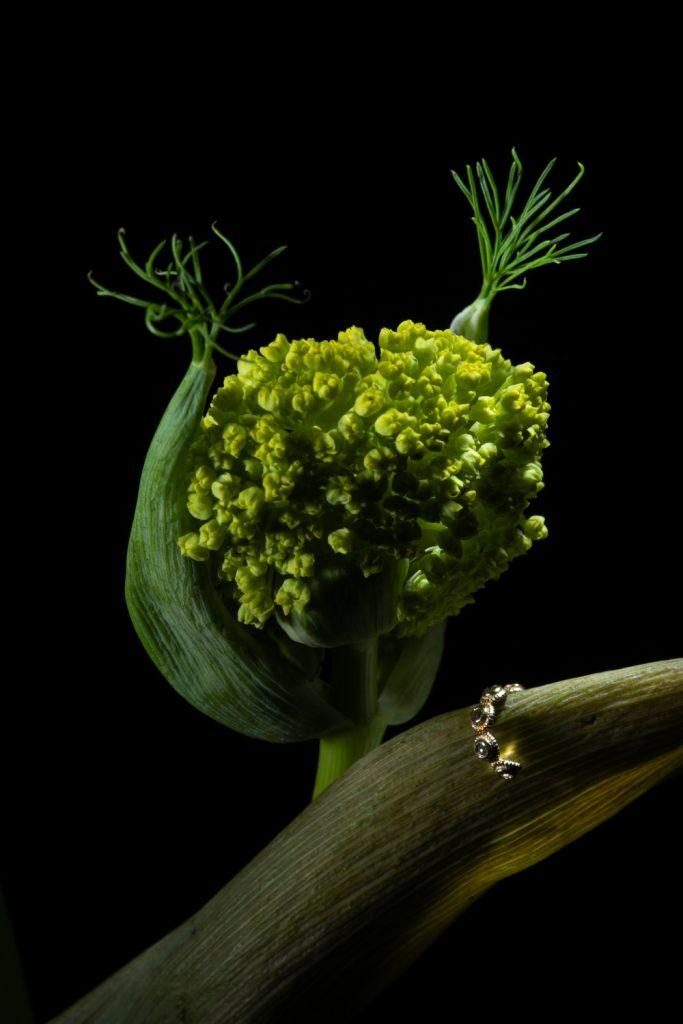 macrophotographie sur une boucle d'oreille miniature avec uen fleur en tête d'ailphoto de virginie perocheau